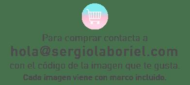 compras_sl-01