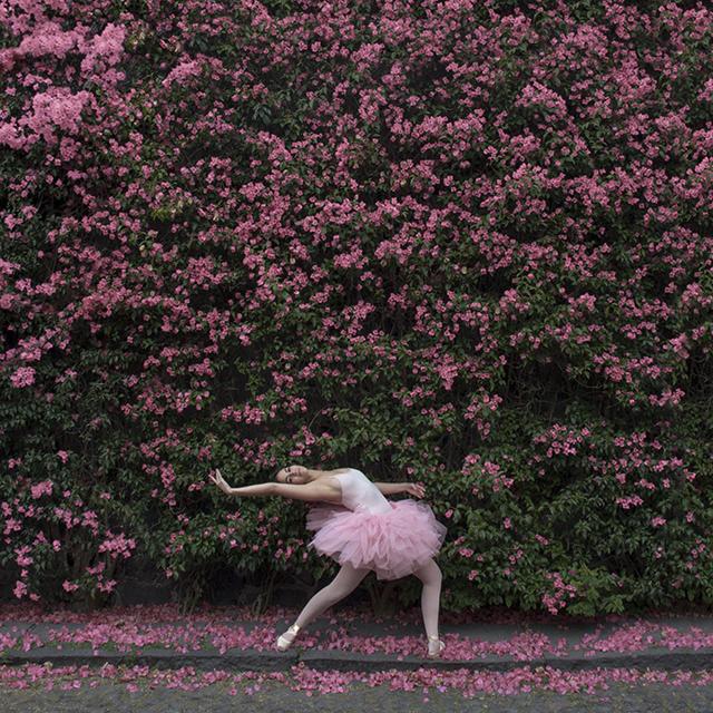 sergiolaboriel_pink2